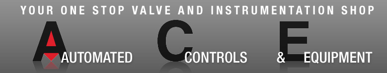 ACE AUTOMATED CONTROLS AND EQUIPMENT INC